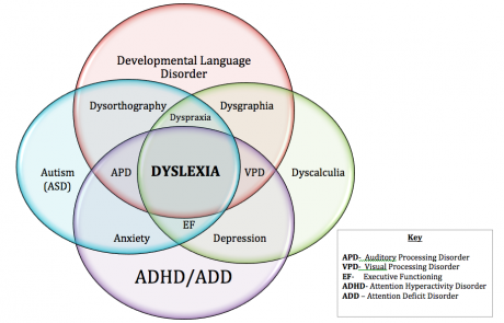 Dyslexia Inattention And Anxiety Mabida >> Co Existing Conditions Of Dyslexia Orton Gillingham Online Academy
